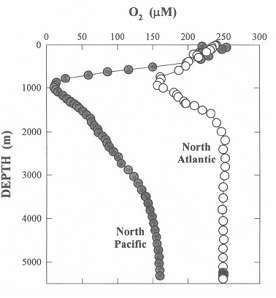 北太平洋及北大西洋溶解氧垂直分布图